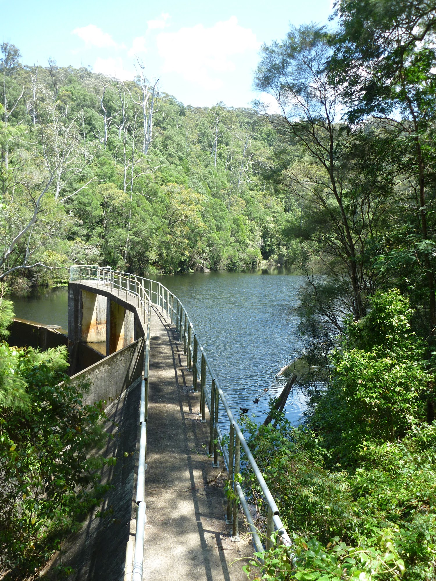 ww_photo_Lower Mooney Mooney Dam