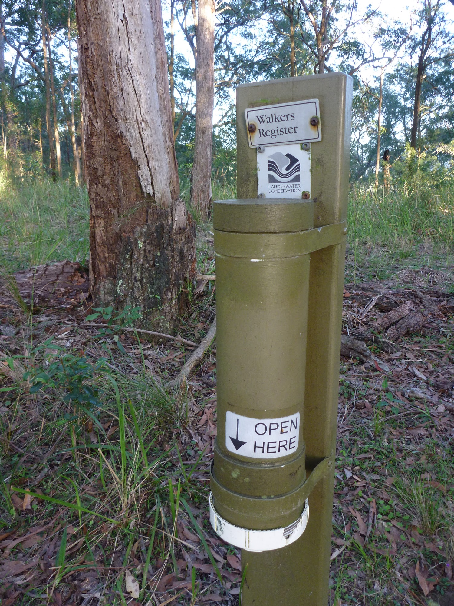 ww_photo_Walkers Registration tube in the Palm Grove NR